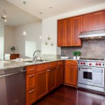 Madison Tower Condo 1000 1st ave #1703 real estate for sale kitchen