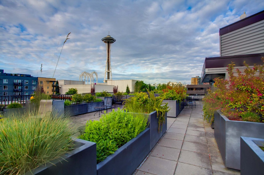 Matae Belltown Downtown Seattle Condo for Sale